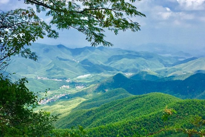 Private Round Trip Transfer to Mogan Mountain from Hangzhou