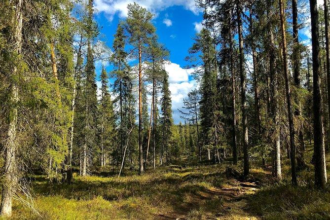 Wilderness Survival Tour - Summer & Autumn