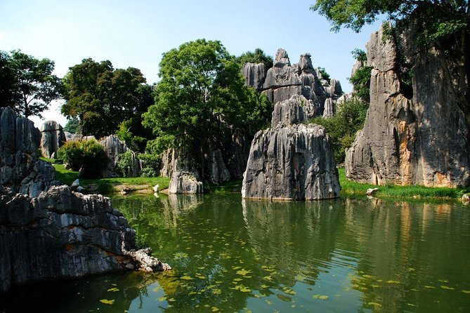 Private Day Tour Stone Forest and Jiuxiang Cave from Kunming