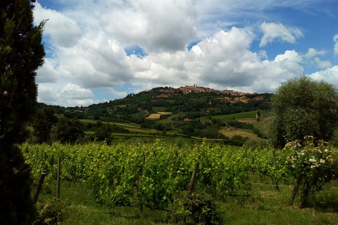 Montepulciano and Pienza Tuscany Wine&Cheese Fullday from Florence