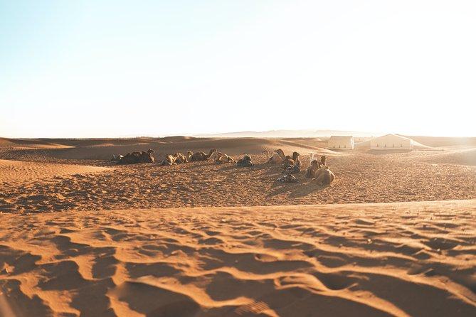 Overnight Tour of Empty Quarter Desert