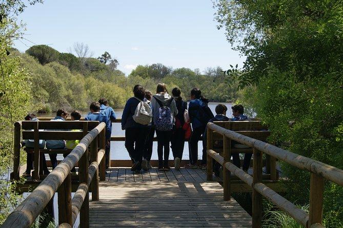 Private Doñana National Park 4x4