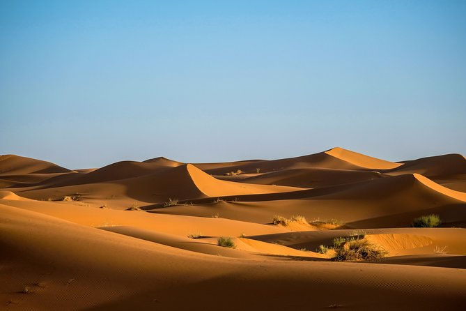 2-Day Private Desert Safari from Marrakech to Zagora