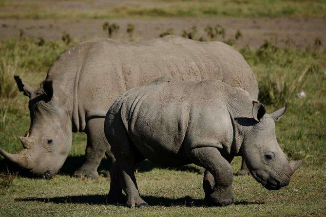 4 days masai national reserve /naivasha