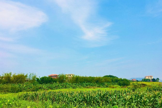 Private Day Tour from Guangzhou to Yanqiao Village, Wu's Yard, Haishou Island