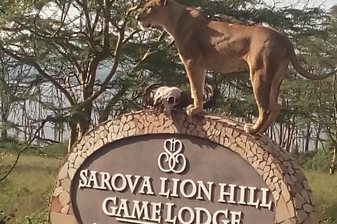 5 Days Safari to Aberdare N/P, Nakuru N/P and Maasai Mara N/R.