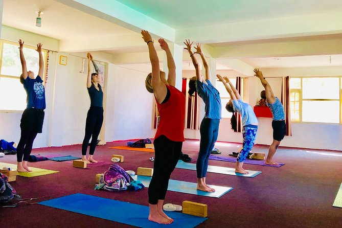 200 Hr Yoga Teacher Training in Dharamsala, Himalayas