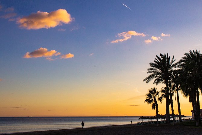 Private Malaga Highlights & Sunset Tour - by OhMyGoodGuide!