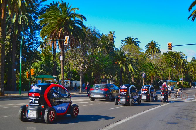 Private Tour in Malaga.Complete electric car Tour + walking tour city center