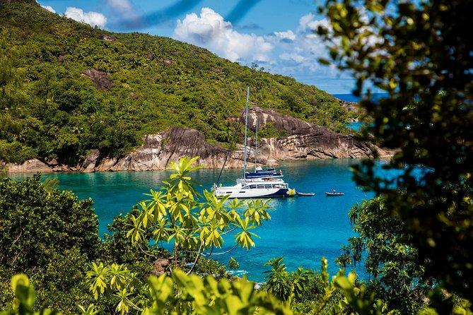 Nature Trail Hike &/or Cruising by Catamaran (ODEZIR Surf & Turf)