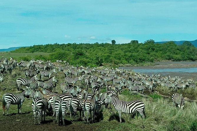 3 day explore masai mara -mid range -4wd