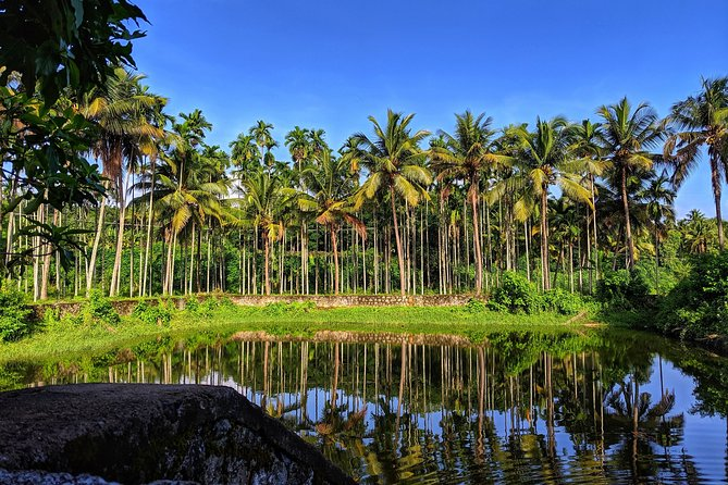 Cochin to Alleppey - Full day Private Tour with transfers