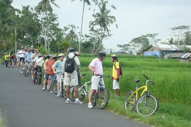 Bali Countryside Cycling Tour Private Group - Private Transport