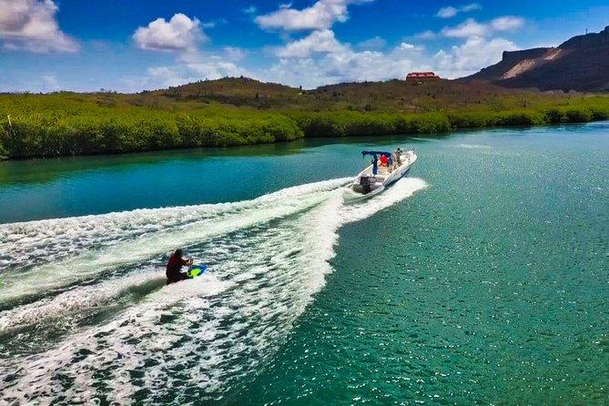 Wake & Knee Board, Water Ski