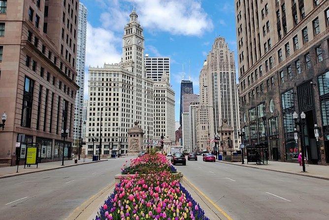 Private Chicago City Minibus Tour