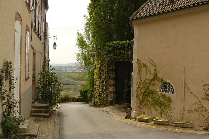 Private 3hr Hautvillers & Epernay Champagne Tasting Tour from Reims by Car