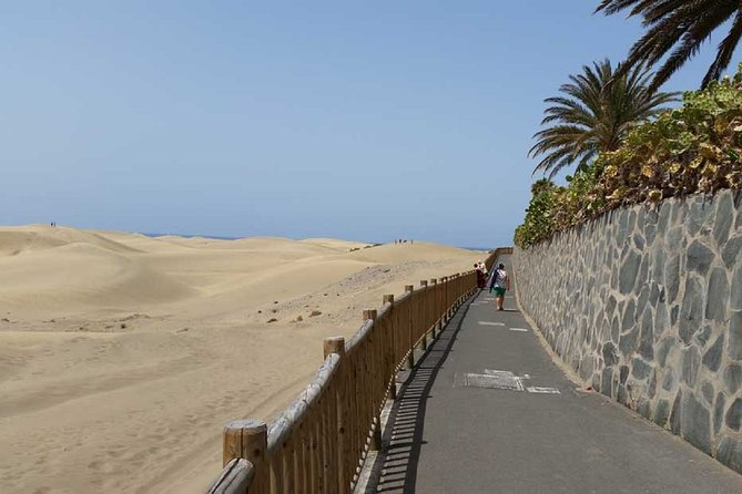 Segway Experience in Maspalomas 2 hours + Option Camel Safari on the Dunes