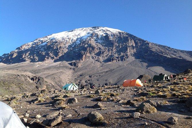 7-Day Lemosho Route Hiking in Kilimanjaro