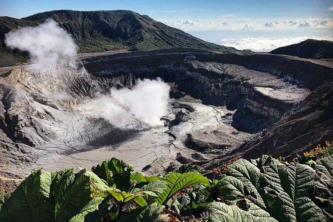 Private Puntarenas Shore Excursion: Poas Volcano and La Paz Waterfall Gardens