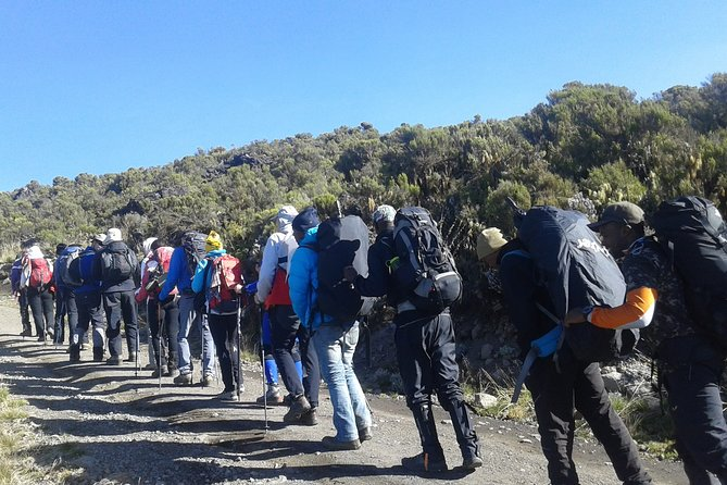 Kilimanjaro Machame Route Day Tour