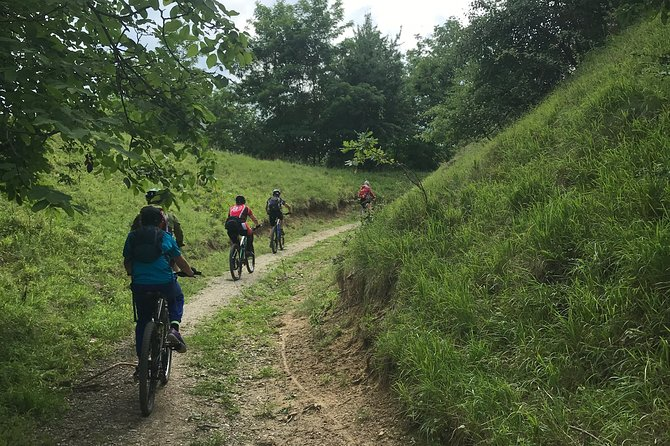 Full-Day Biking Tour in Saxon Villages