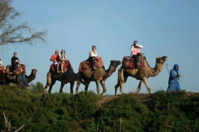 Agadir Quad Bike and Camel Ride