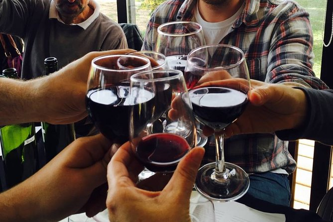 Be a winemaker for a day!