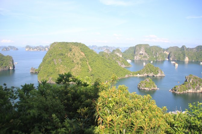 Halong Luxury Cruise 2D/1N: Kayaking, swimming, Titop island, Surprise cave photo 10