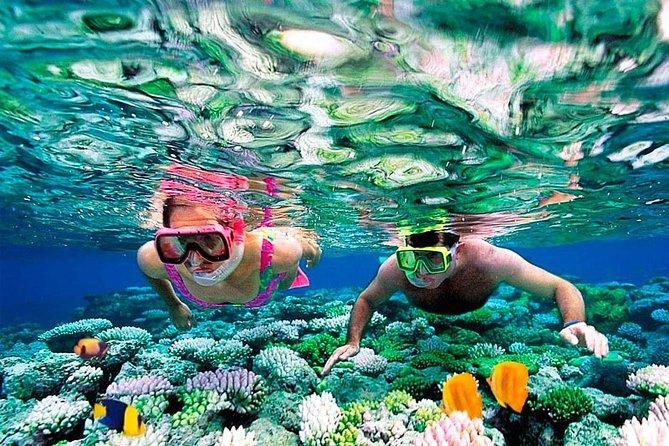 Snorkeling Trip to Pigeon Island