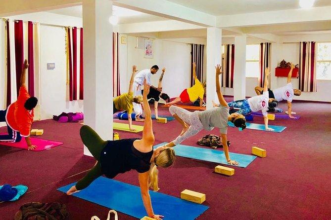 300 hr Advanced Yoga Teacher Training: Hatha- Vinyasa in Dharamsala