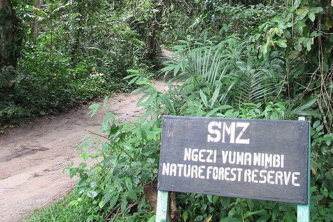Ngezi Forest Tour