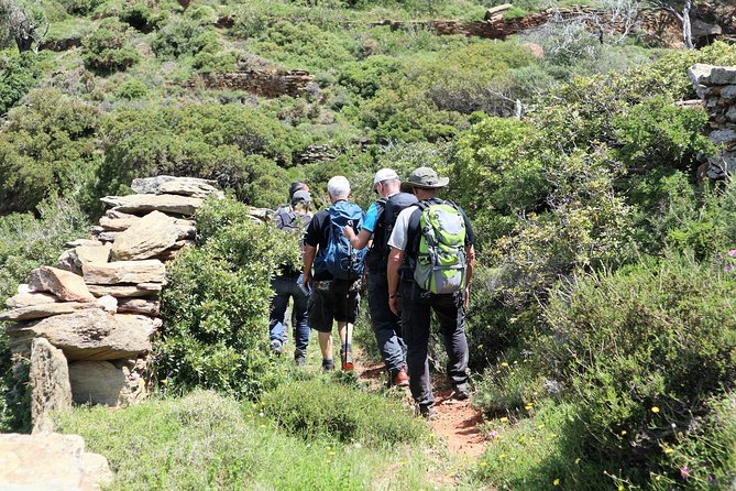 Small-Group Guided Hiking Tour in Andros with Brunch