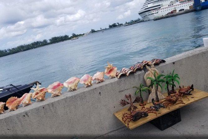 Nassau Airport Round-trip Shared Transfers