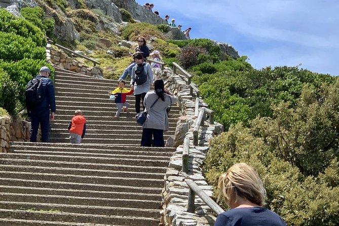 Cape Peninsula and Kisternbosch botanical Garden Full Day Tour.