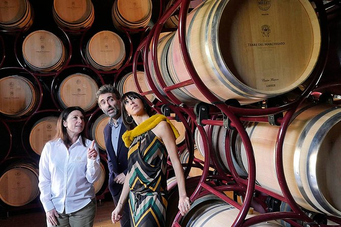 "Bolgheri: ""CLASSIC"" Winery Tour with Wine Tasting"