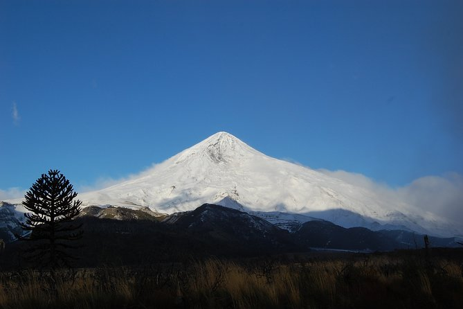 Lanin Volcano Trek - North Face to the Base Camp