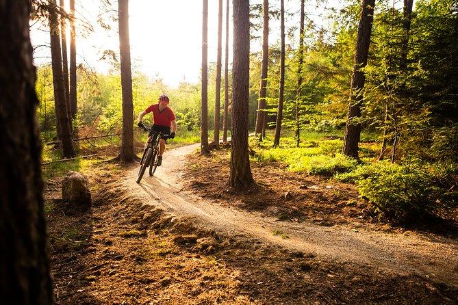 Ljubljana MTB trail