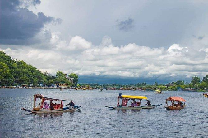 Kashmir Chaloo