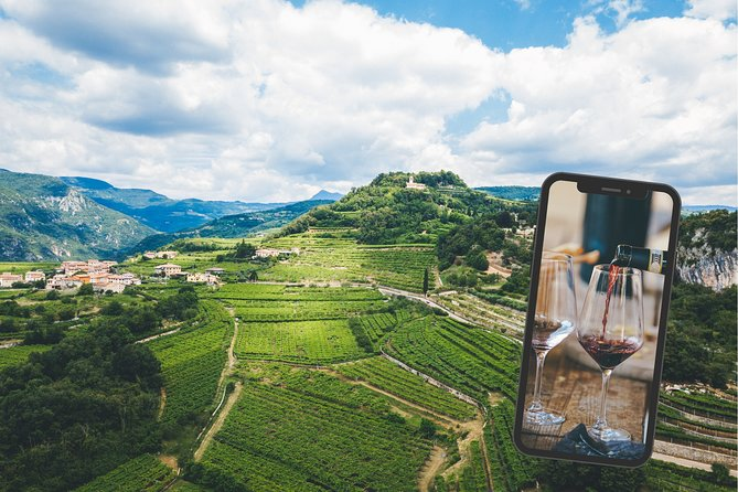 Virtual Amarone Wine tour