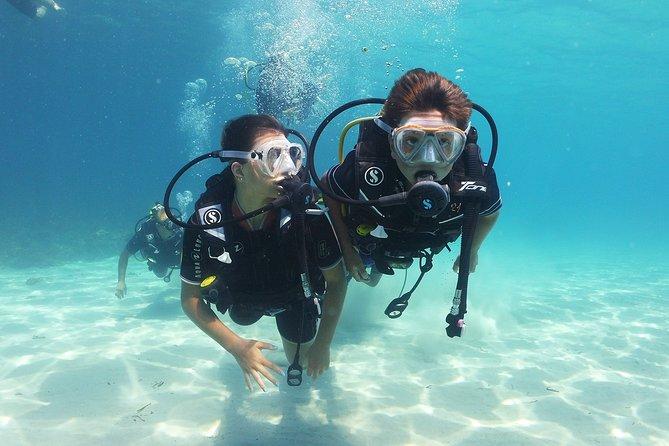 Discover Scuba Diving in Mallorca