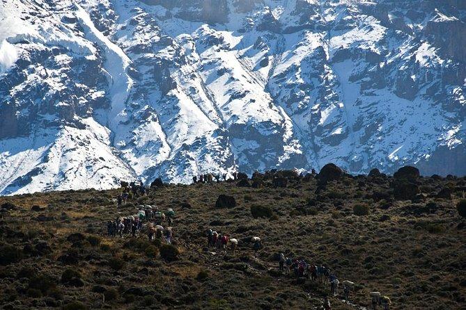 7-Day Kilimanjaro Private Hiking Tour via Machame Route