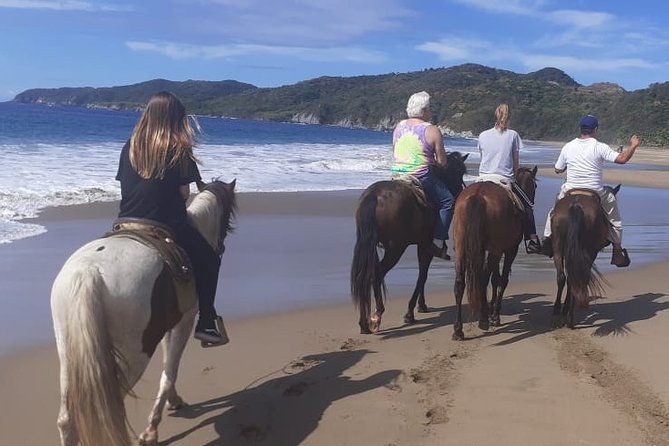 Horseback Riding in Ixtapa with Hotel Pickup
