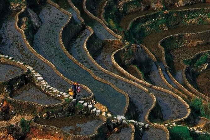 8-Day Private Landscape and Cultural Tour to Mid-West Hunan-Ziquejie Rice Field