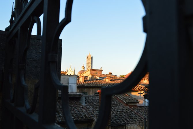 The beauties of Siena in a half day