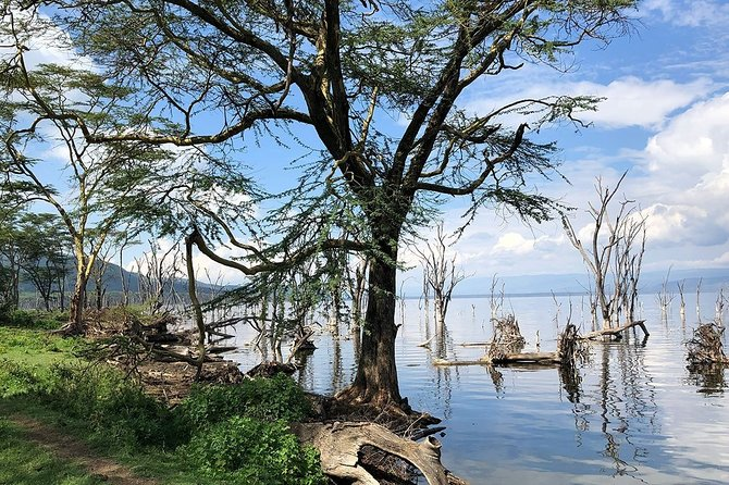 Full-Day Lake Nakuru National Park from Nairobi photo 6