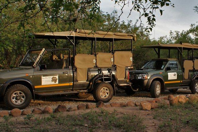 Private Day Safaris