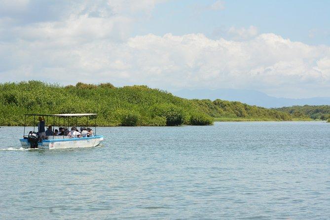 Mangrove Nature Boat Tour.