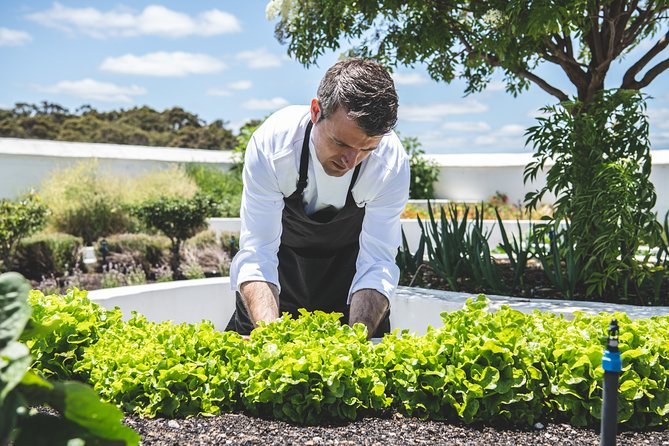 Voyager Estate: The Origins Tasting & 4 or 7 Course Lunch