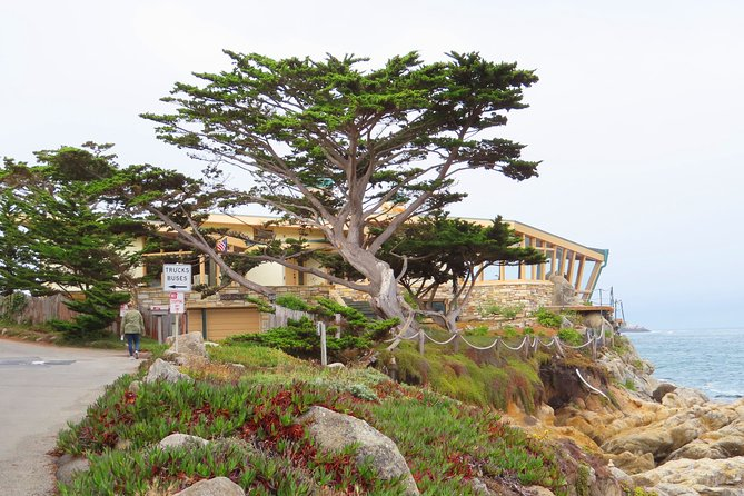 Carmel Point: Discover its rugged coastline on an audio walking tour