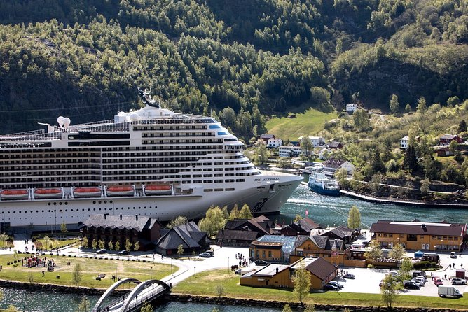 Private day tour to Flam - incl RIB Sognefjord Safari and Flåm Railway
